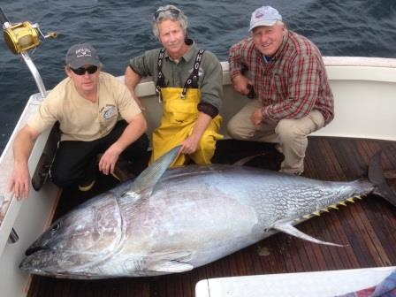 Gloucester tuna fishing