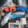 Gloucester tuna fishing charters