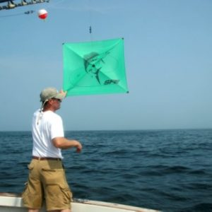 Gloucester kite fishing charters offshore cape ann ma for Kite fishing for tuna