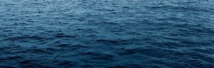 Gloucester tuna fishing