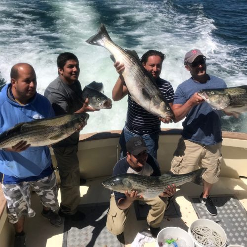 Boston Premier Remodeling Stripers on Tuna Hunter