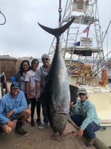 Giant Bluefin Tuna on Tuna Hunter
