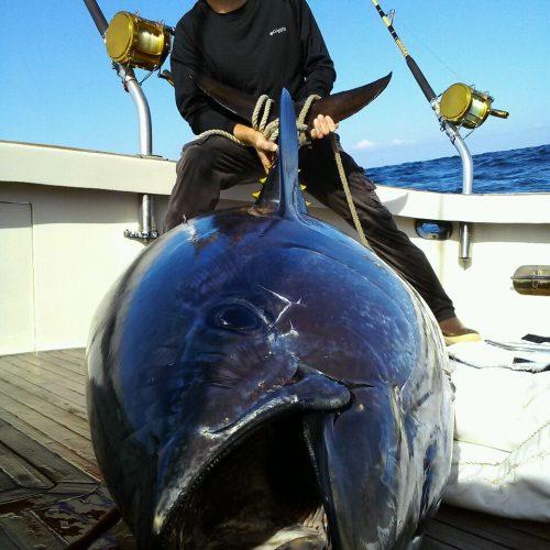 Michael Orr Bluefin Tuna on Tuna Hunter