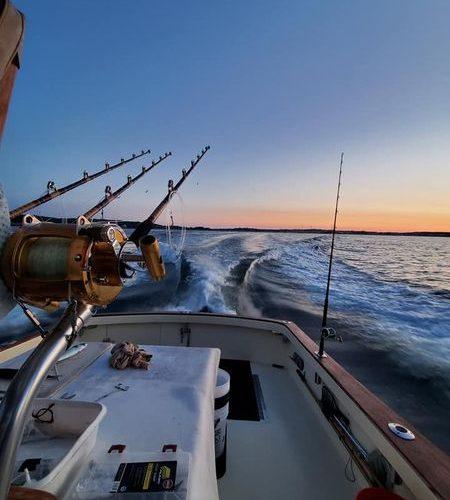 Tuna Hunter Morning Trail